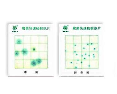 霉菌,酵母菌测试片--农药残留检测仪_食品安全检测仪